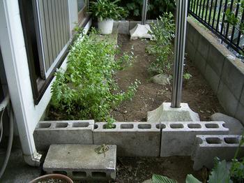 20040725-garden-1.JPG
