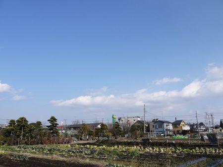 Seiginsiki_no_sora_800